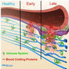 HPVワクチン副反応マウスモデル論文の不当な撤回問題について