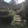 緑地公園と草津近鉄出張ブログです!