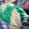 【ビリーアイリッシュカラー】可愛いパンチの効いたヘアデザイン