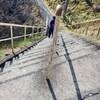 埼玉県飯能市の伊豆ヶ岳登山…その1😎