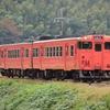 第1566列車 「 晩秋のタラコキハを非電化区間で狙う 2020・秋 山陰本線紀行その1 」