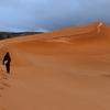 コーラル ピンク サンド デューンズ州立公園 / Coral Pink Sand Dunes State Park