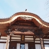 深大寺と神代植物公園を満喫