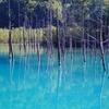 【北海道2600kmクルマ旅その7】花!丘!池!北海道のど真ん中、富良野~美瑛は陸の絶景まみれだ!