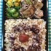 206日目 豚生姜焼き玄米弁当