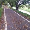 自転車は自由な乗り物 でも自動車は? 「流れ」に左右されて意外と自由じゃないよ?