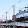 第567列車 「 ハコ釜万歳!カラシを桂川橋梁にて狙う 」
