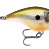 【ラパラ】 小さいボディで暴れ、魚に猛アピールするクランクベイト「ビーエックス ブラット」発売!
