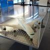 トゥールーズのアエロスコピア航空博物館に行ってみた