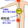 左側の半身の不調が筋膜の癒着箇所の縦並びから起きる場合