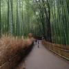 嵐山で昼食、からの周辺を散策 その2~そうだ、京都に行ってきた<第5話>