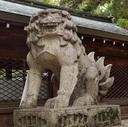 京都旅行のオススメ