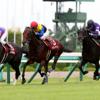神戸新聞杯《G2》の事前予想 本命馬と特注馬について