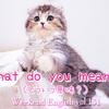 【週末英語#131】相手の言った意味や意図を訪ねるときの突っ込み表現は「What do you mean?」