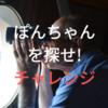 ぽんちゃんを探せ ミニマリスト奮闘編