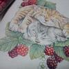 完成】子猫部分をホルベイン色鉛筆で塗ってみました☆おとニャーの塗り絵ノートより