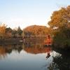 池畔の桜名所