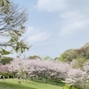 春を楽しむ🌿