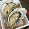 広島に旅行に行ったら絶対食べてほしいのは「牡蠣」と、コレ!!!