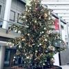12月3週目 クリスマスという圧力