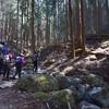 2019/4/6 【会社の登山部に入った】芦ヶ久保駅から丸山ハイキング