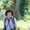 ベリーズ 背景はクルックドツリー村の巨木の集まる場所