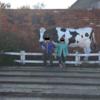 【行ってきた】遊園地なのに動物とも触れ合える「マザー牧場」