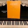 シューベルト歌曲集「冬の旅」全曲ピアノ演奏プロジェクト1