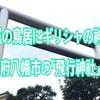 鳥居が金属⁉︎ギリシャの神殿⁉︎京都府八幡市の「飛行神社」