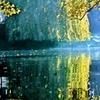 ラヴェルの「水の戯れ」をスタインウェイのフルコンで弾いてみた。