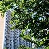 学習中=3.マンションの建物及び付属施設の形質及び構造に関      する事項         3-1 マンションの構造•設備         3-2 長期修繕計画         3-3 建物•設備の診断         3-4 大規模修繕工事