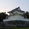 二条城桜まつり2017に行ってきました!