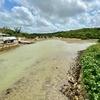 島尻のマングローブ林(沖縄県宮古島)