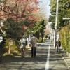 1月中旬:オールドレンズSuper-Takumar 50mm F1.4でお写んぽ。:復路編