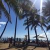 会社員を辞めてハワイにプチ留学してきた☆大人も楽しく留学しよう!