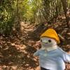 """快晴のハイキング!京都の名コース""""明智越え""""にペンギンズもご機嫌です(その2)(329)"""