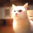 Nao's blog