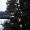 新宿区立林芙美子記念館 Hayashi Fumiko Memorial Hall 再訪