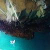 本州最東端(岩手県宮古市)にある浄土ヶ浜「青の洞窟」をサッパ船で探検