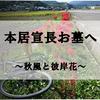 【サイクリング-39km】松阪市『本居宣長奥墓』へサイクリング!彼岸花とピチピチJKを眺めながら帰宅!