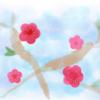 【募集】3月土日クラスバレエレッスン リラの精、ショパン華麗なる大円舞曲、白鳥コールド