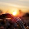 早期退職したら、冬は早起きしないかも?