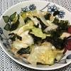 ワシャワシャ食べられます!韓国風キャベツサラダ