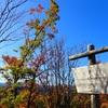 まだまだ紅葉は楽しめる?里山散歩❗️