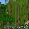 北の村にかまど付き自動竹収穫装置を作る~ノスクラ(387)