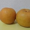 鳥取県オリジナル品種をゲット!