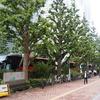 バスツアーで赤坂離宮へ(予告編)