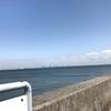 2018 千葉県で無料の潮干狩り場!浦安三番瀬でアサリ・ハマグリ・ホンビノス・マテ貝がとれる!