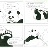 実はパンダがすごく好き
