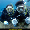 Diving the Okinawa sea with family!